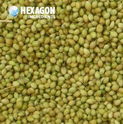 Coriander Seeds: Hexagon Ingredients